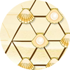 貝殻パズル